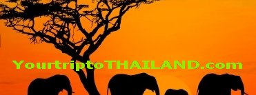 Yourtriptothailand.com
