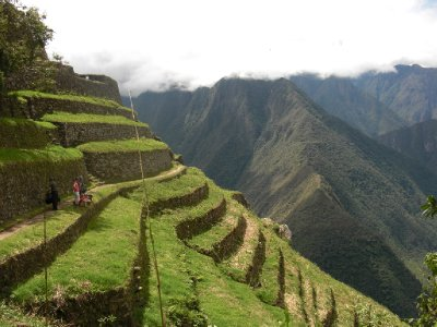 Incan terrace farming by for What is terracing