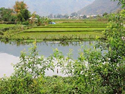 Lat village in Mai Chau