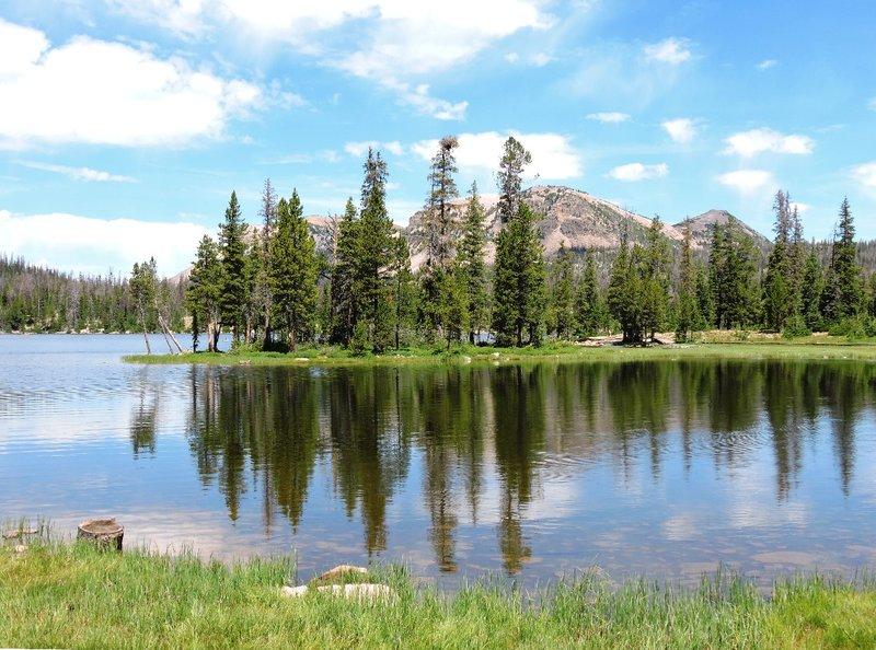 Mirror Lake in Summer