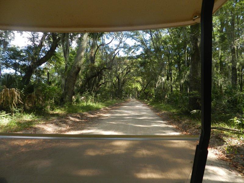 Dirt roads on the island