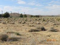 The Mohave Desert