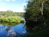 A view of Fish Creek