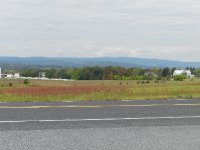 Pickett's Charge was right here. 4000 dead when over.