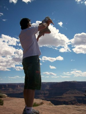 A Lion King moment, Dead Horse Point