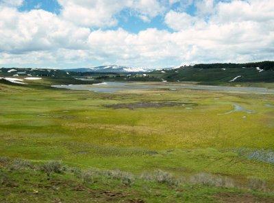 Summer_in_Yellowstone.jpg