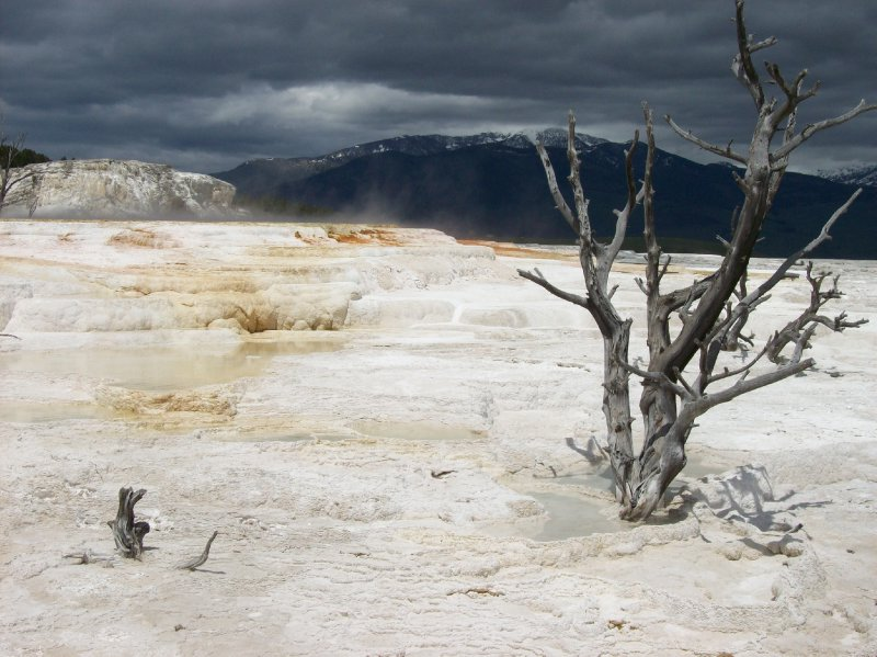 large_9Mammoth_Springs.jpg