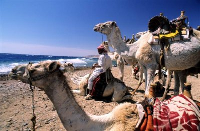 ss-090414-egypt-travel-21_grid-9x2
