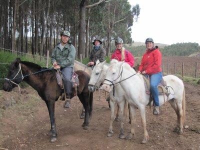 Horseridin..co__11_.jpg