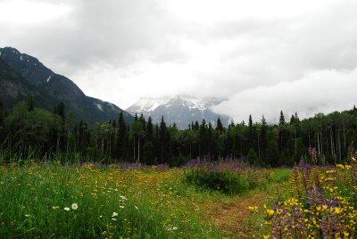 Mount_Robson.jpg
