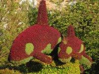 Orca tree art