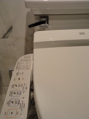 Controls galore on the toilet