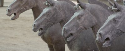 520 Terracota horses have been unearthed