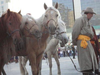 Spare ponies in case of breakdown