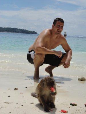On the beach with monkeys