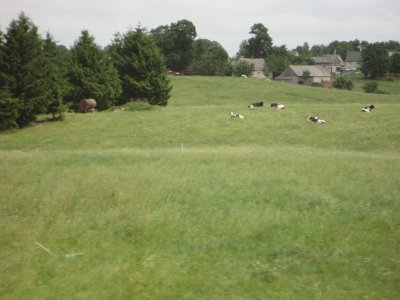 Pasture land on route to Vilnius