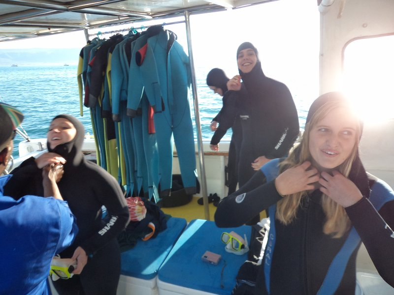 The first group to dive! We're incredibly brave =)