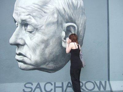 berlin wall sarah