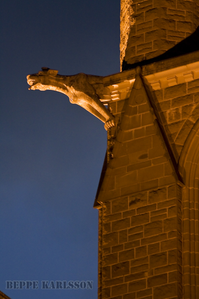 Gargoyle in Bendigo