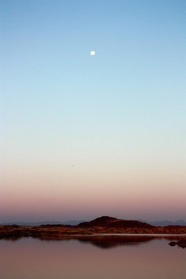 A sunset moon, Namib Desert, Namibian
