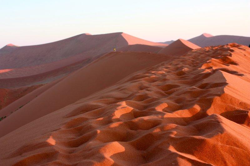 Footprints on Dune 45, Namib Desert, Namiba