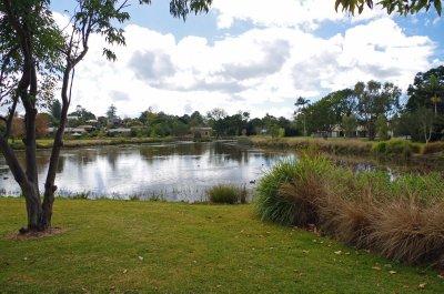 Mapleton Lily Pond