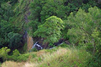 Mapleton Falls