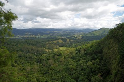 View from the Mapleton Falls Lookout