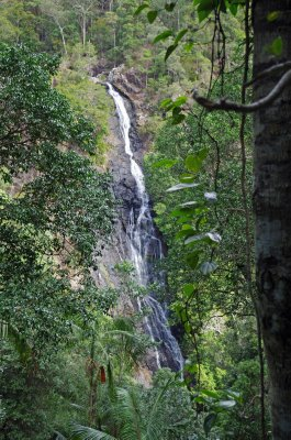 Kondalilla Falls near Montville - 80 metres high