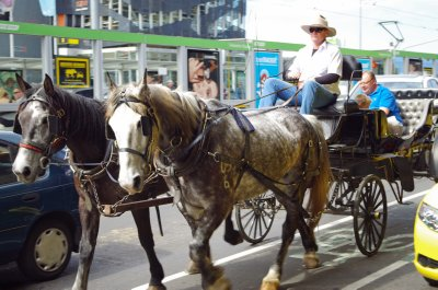 Horses with carriage passing Flinders Street Station