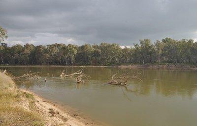 Murray River from Quicks Beach