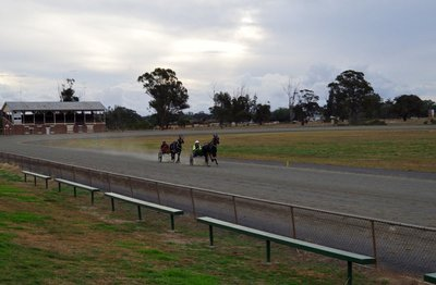 A couple of two year old pacers coming down the straight