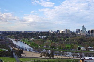 Looking across the yarra to the Botanical Gardens