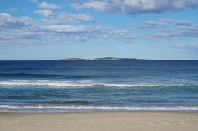 Montague Island from Handkerchief Beach