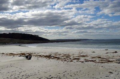 Grindstone beach looking north