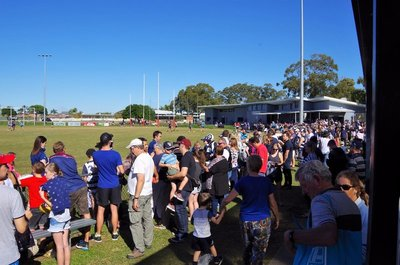 A good crowd turned up to watch the Cats train.