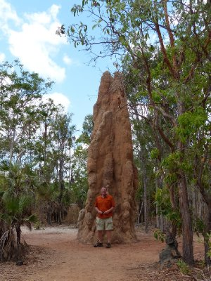 Termite Mount in Litchfield National Park