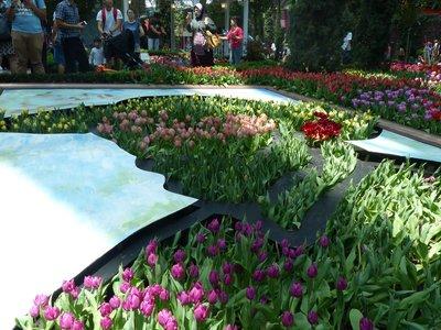 Gardens on the Bay - Van Gogh in Tulips