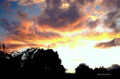 Sunrise from my window