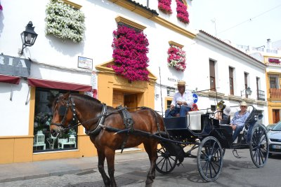Horse and carts on Cordoba old town