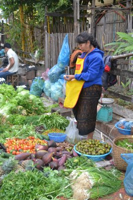 Luang Prabang morning food market