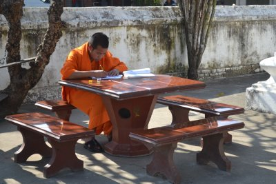 Young monk studying in courtyard of temple complex, Luang Prabang