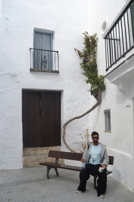 Sully in Vejer de la frontera