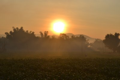 Sunrise over rice paddies in Mai Tang