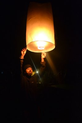 Chinese Lantern in Pai