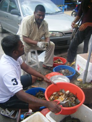 Crabs for sale