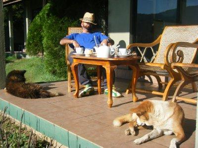 Sully chilled on veranda