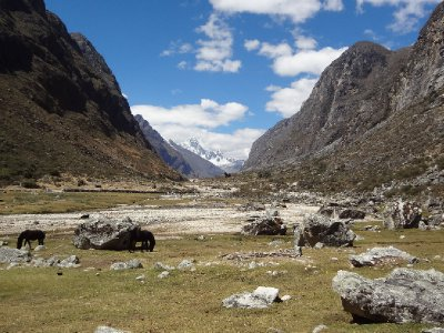 La vallée de Santa cruz