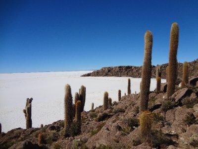 L ile Inca Huasi