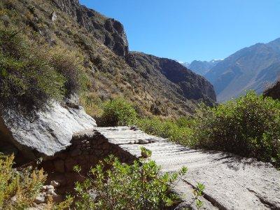 un pont /la descente dans le canyon de Colca